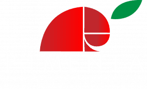 Pimenta Group Web Agency Rimini Logo White